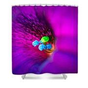 Macro Purple Flower Shower Curtain