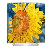 Macro Sunflower Art Shower Curtain