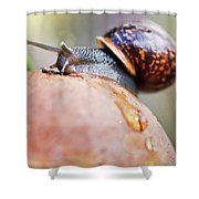 Macro World Shower Curtain