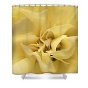 Macro Yellow Rose Shower Curtain