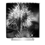 Macrofied Shower Curtain