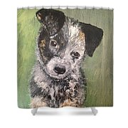 Macy As A Puppy Shower Curtain