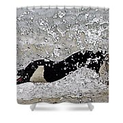 Mad Goose Shower Curtain