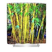 City Park Bamboo Grass Shower Curtain