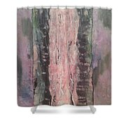 Madera Shower Curtain