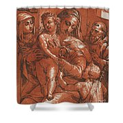 Madonna And Child Accompanied By Saints Shower Curtain