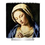 Madonna At Prayer Shower Curtain