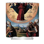 Madonna In Glory And Holy Hones Shower Curtain