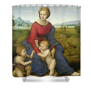Madonna In The Meadow Shower Curtain by Raphael
