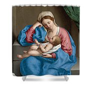 Madonna With The Infant Christ Child Holding A Goldfinch On A String  Shower Curtain