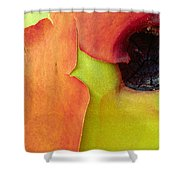Madrona Shower Curtain