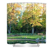 Mae Stecker Park In Shelby Township Michigan Shower Curtain