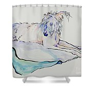Maevis Shower Curtain