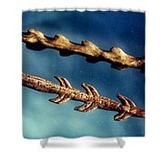 Magdalenian Harpoons Shower Curtain