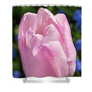 Magenta Bloom Shower Curtain