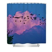 Magenta Dream Shower Curtain