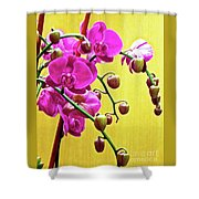 Magenta Orchid 3 Shower Curtain