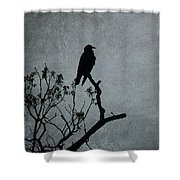 Magestic Crow Shower Curtain