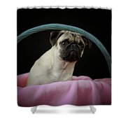 Maggie In A Basket Shower Curtain