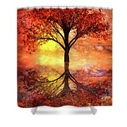 Magic At The Shore Shower Curtain