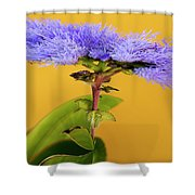 Magic Garden 15 Shower Curtain
