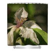 Magic Garden 18 Shower Curtain