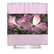 Magic Morning Shower Curtain