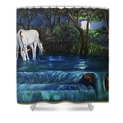 Magic Night Shower Curtain