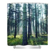 Magic Sunbeams Shower Curtain