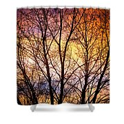 Magical Colorful Sunset Tree Silhouette Shower Curtain