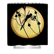 Magical Dragonfly Shower Curtain