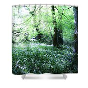 Magical Forest At Blarney Castle Ireland Shower Curtain