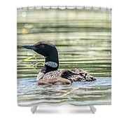 Magical Loons Shower Curtain
