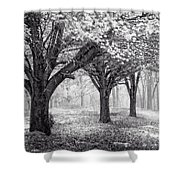Magical Meadow  Shower Curtain