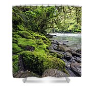 Magical New Zealand Shower Curtain
