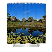 Magical Pond With Water Lilies Shower Curtain