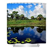 Magical Water Lily Pond 2 Shower Curtain