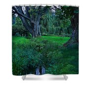 Magical Woodland Glade Shower Curtain