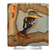 Magnificent Blue-winged Kookaburra Shower Curtain by Brian Leverton