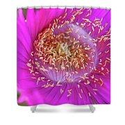 Magnificent Flower Shower Curtain