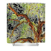 Magnificent Tree Shower Curtain