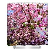 Magnolia Beauty #15 Shower Curtain