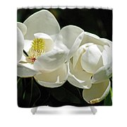 Magnolia Bliss Shower Curtain