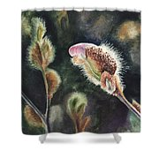 Magnolia Bud By Irina Sztukowski  Shower Curtain