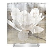 Magnolia Flower Shower Curtain by Elena Elisseeva