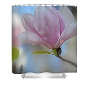 Magnolia Flower IIi Shower Curtain