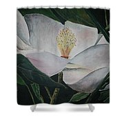 Magnolia Flower Oil Painting Shower Curtain