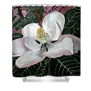 Magnolia Flower Painting Shower Curtain