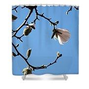Magnolia Flowers Budding Art Prints Spring Floral Baslee Troutman Shower Curtain