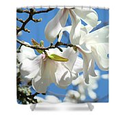 Magnolia Flowers Floral Art Spring Flowering Tree Baslee Troutman Shower Curtain